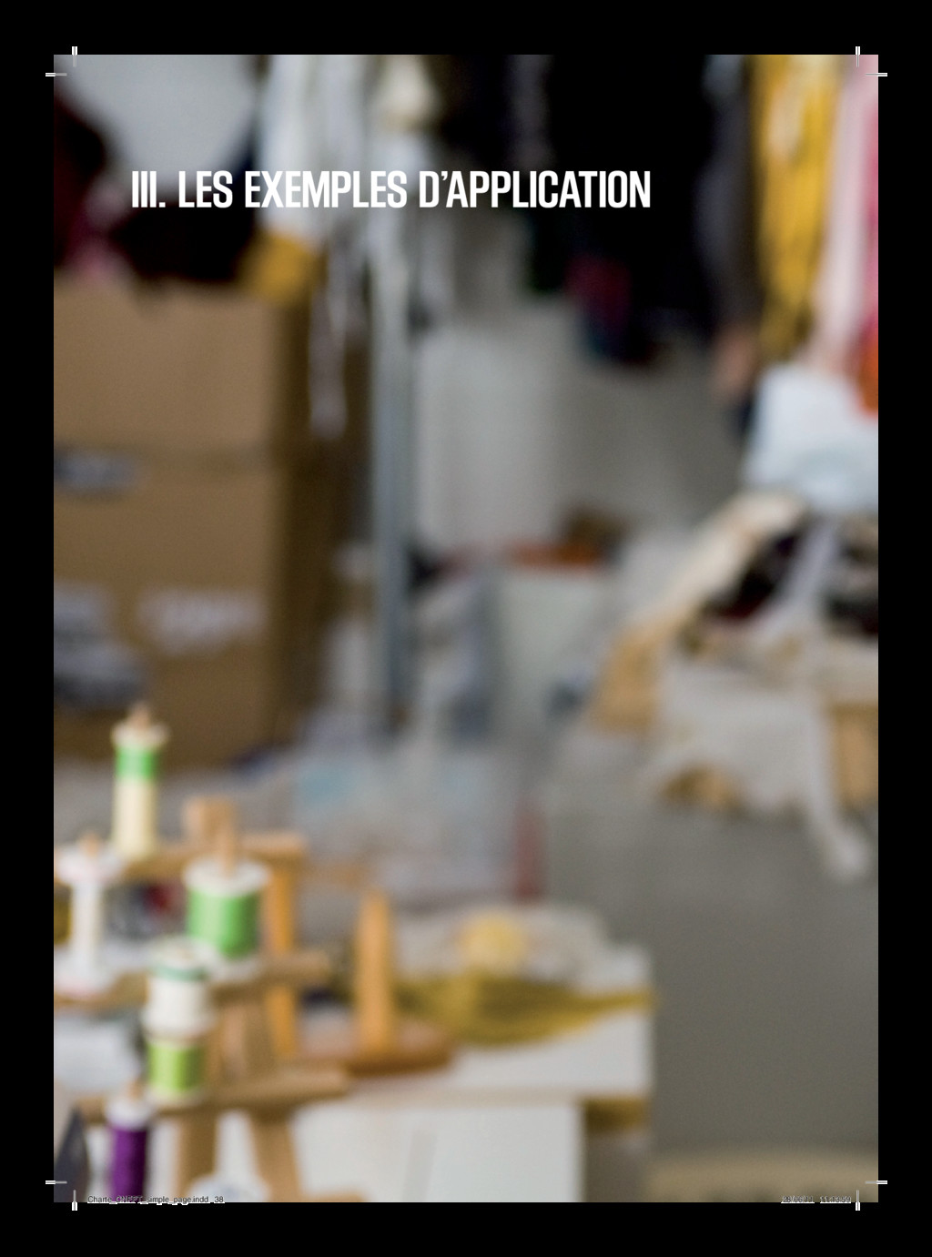 III. LES EXEMPLES D'APPLICATION Charte_CNFPT_si...