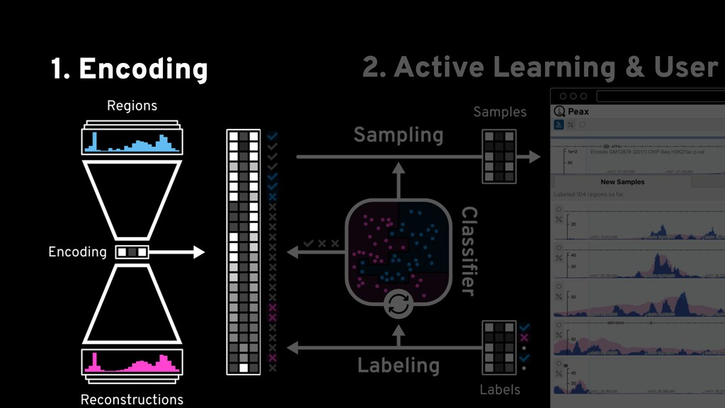 1. Encoding 2. Active Learning & User