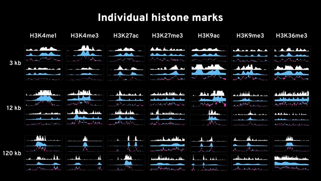 H3K4me1 H3K4me3 H3K27ac Individual histone mark...