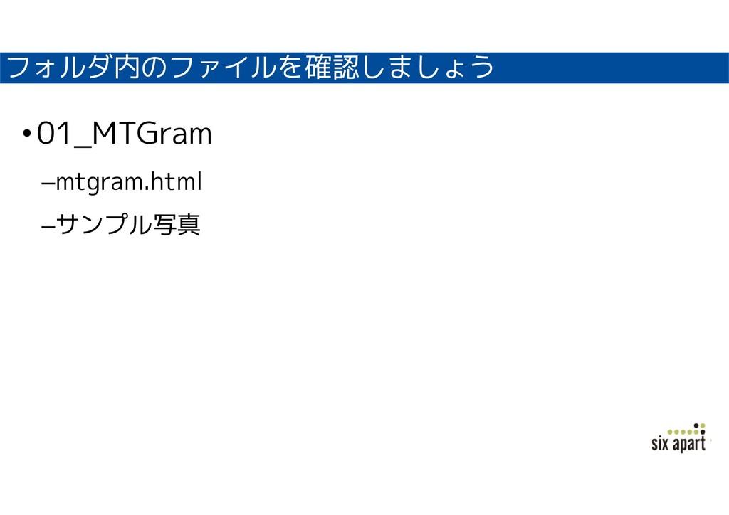 フォルダ内のファイルを確認しましょう •01_MTGram –mtgram.html –サンプ...