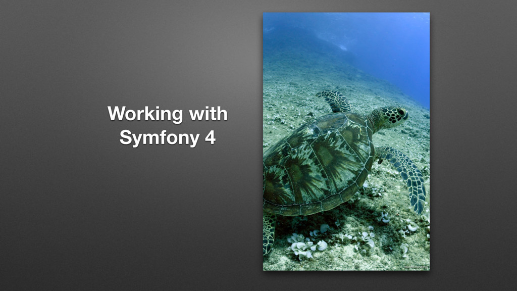 Working with Symfony 4 https://flic.kr/p/GKSNas