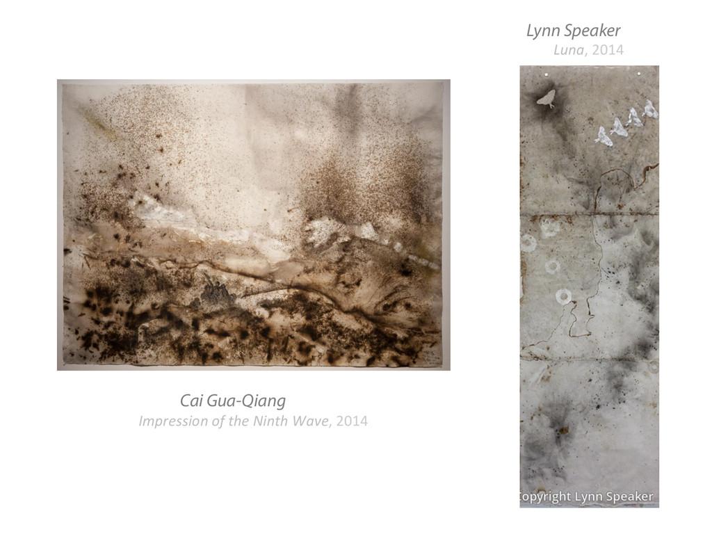 Lynn Speaker Cai Gua-Qiang Impression of ...