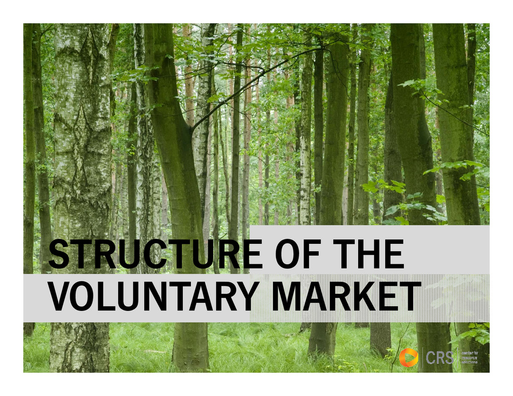 STRUCTURE OF THE VOLUNTARY MARKET