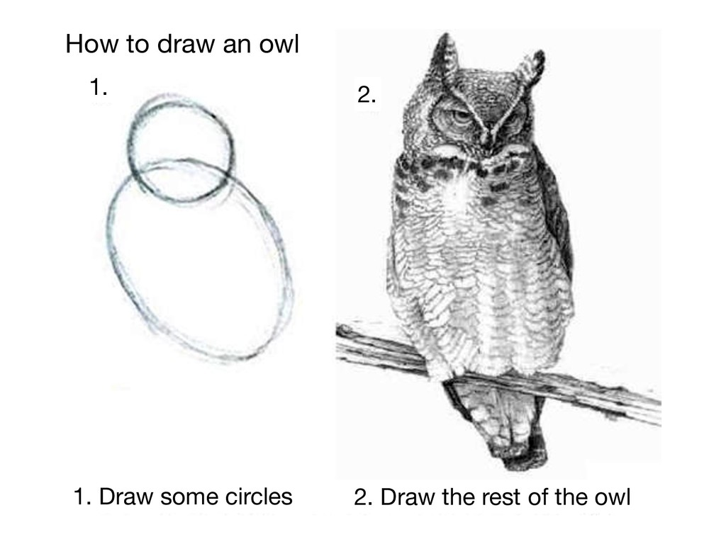 How to draw an owl 1. Draw some circles 2. Draw...