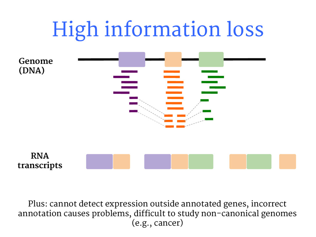 High information loss RNA transcripts Genome (D...