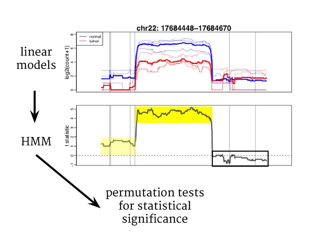 linear models HMM permutation tests for statist...