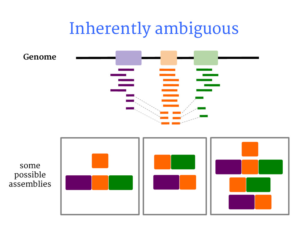 some possible assemblies Inherently ambiguous G...