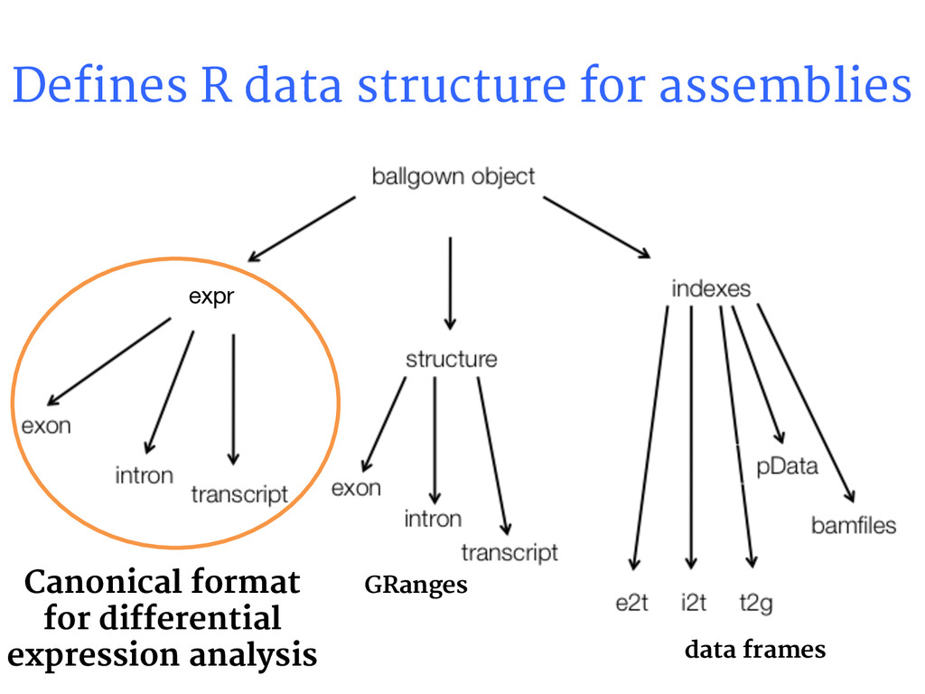 Defines R data structure for assemblies expr GR...