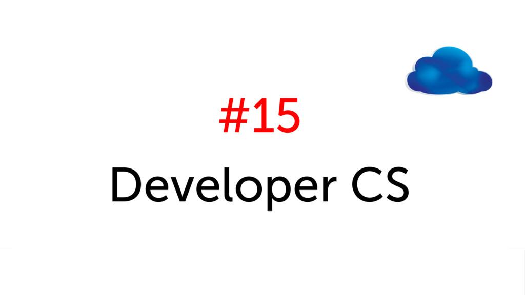 #15 Developer CS