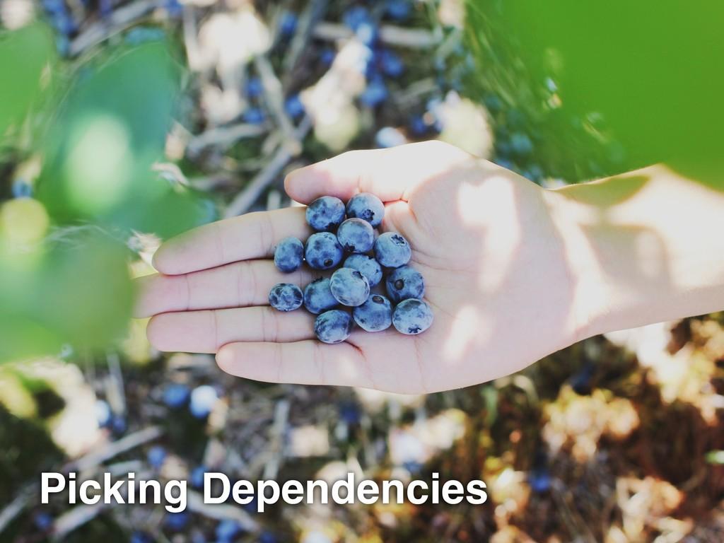 Picking Dependencies