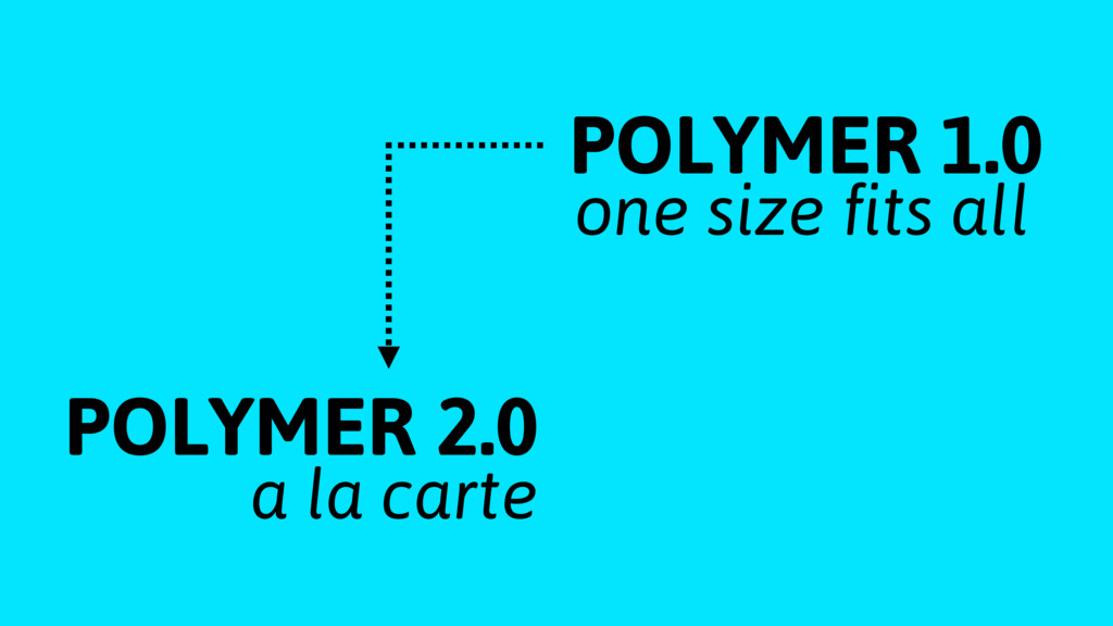 POLYMER 1.0 POLYMER 2.0 one size fits all a la c...