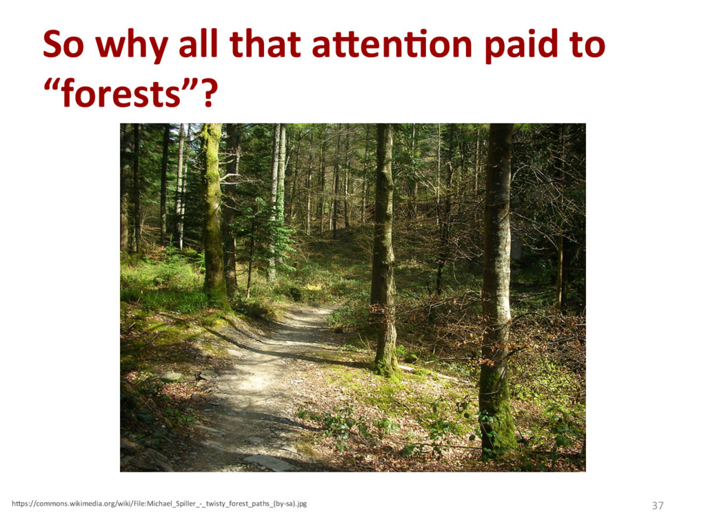 """So why all that a_en'on paid to """"forests""""? 37 h..."""