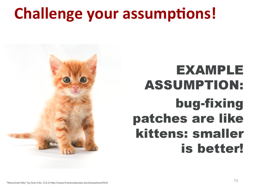 Challenge your assump'ons! 73 EXAMPLE ASSUMPTIO...