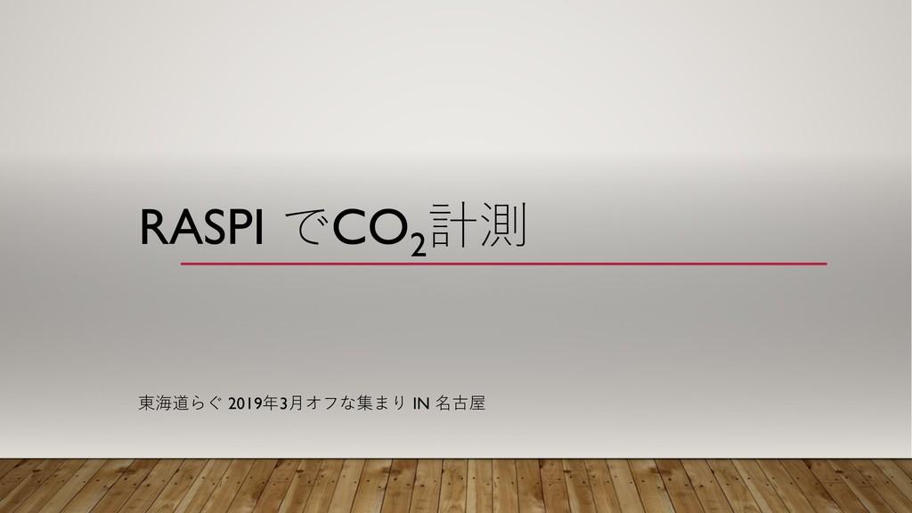 RASPI CO2    20193  IN