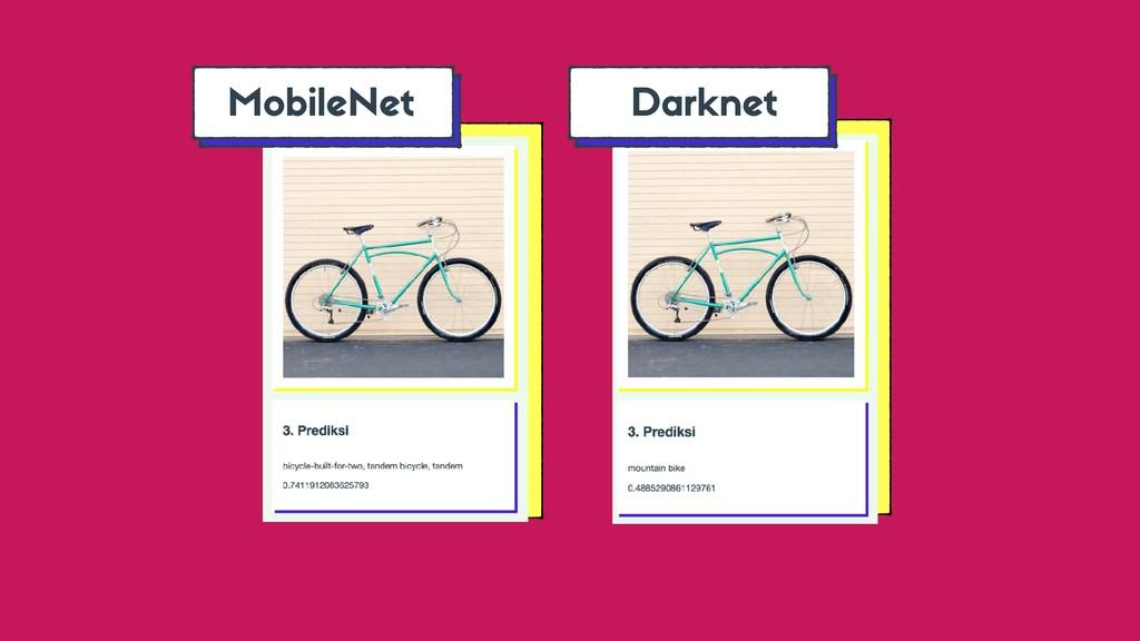 Darknet MobileNet