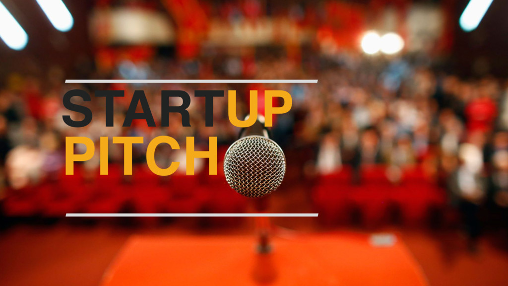BUSINESS MODEL STARTUP PITCH