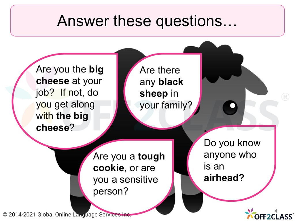 Answer these questions… Are you the big cheese ...