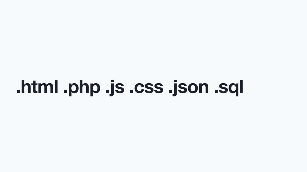 .html .php .js .css .json .sql