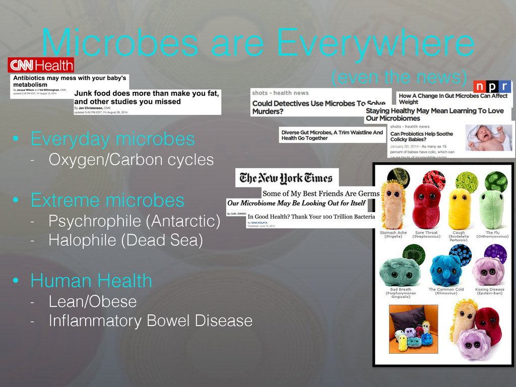Microbes are Everywhere • Everyday microbes - O...