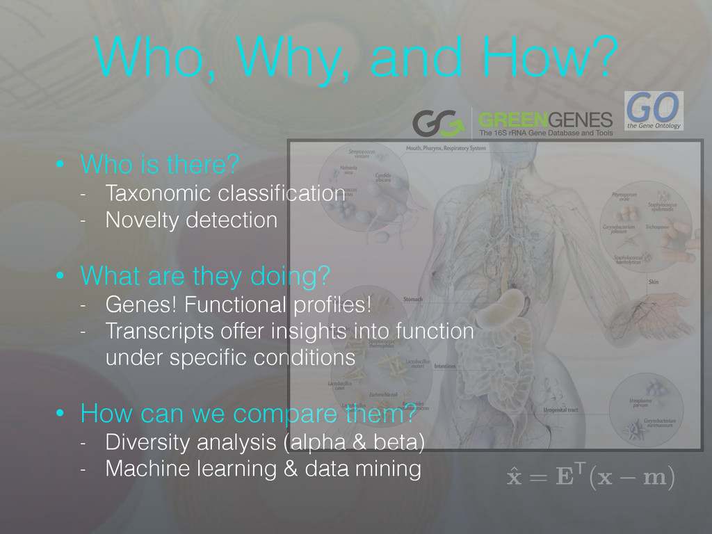 Who, Why, and How? • Who is there? - Taxonomic ...