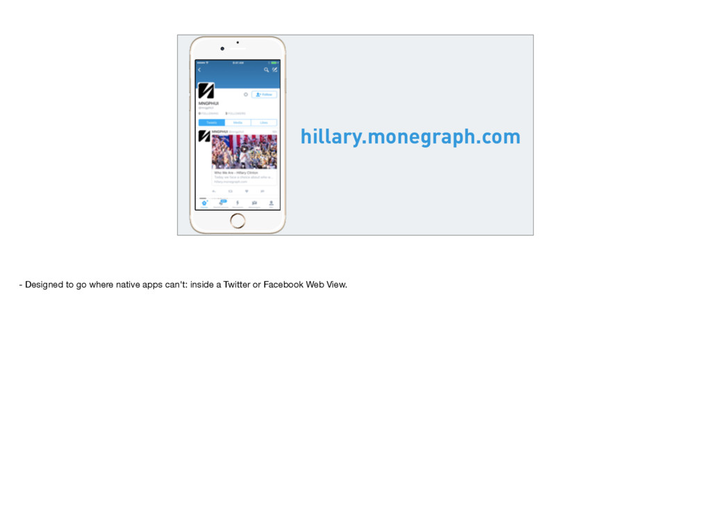 hillary.monegraph.com - Designed to go where na...
