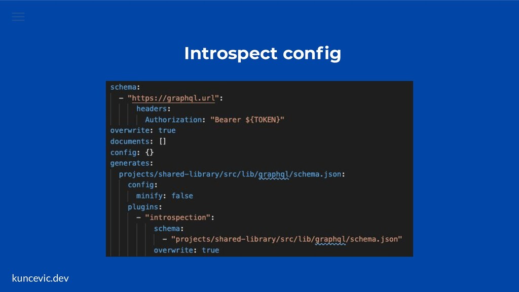 kuncevic.dev Introspect config