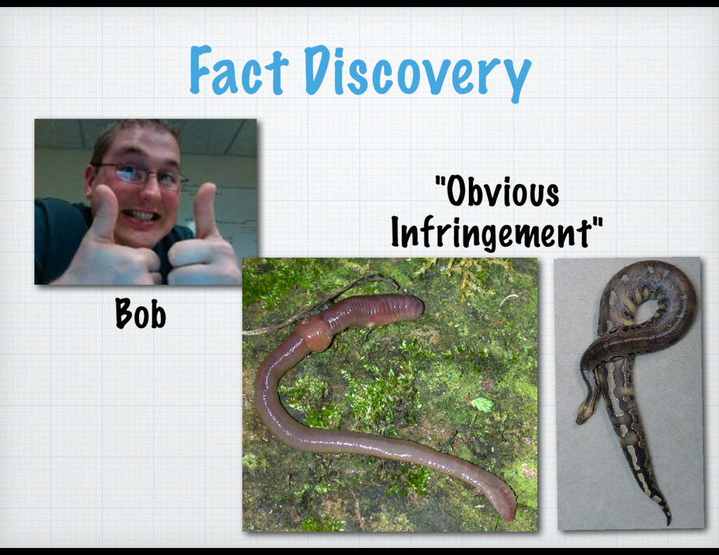 """Fact Discovery Bob """"Obvious Infringement"""""""