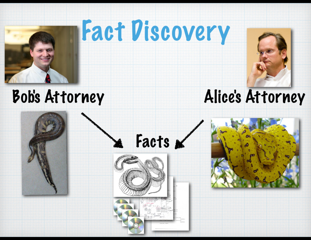 Fact Discovery Bob's Attorney Alice's Attorney ...
