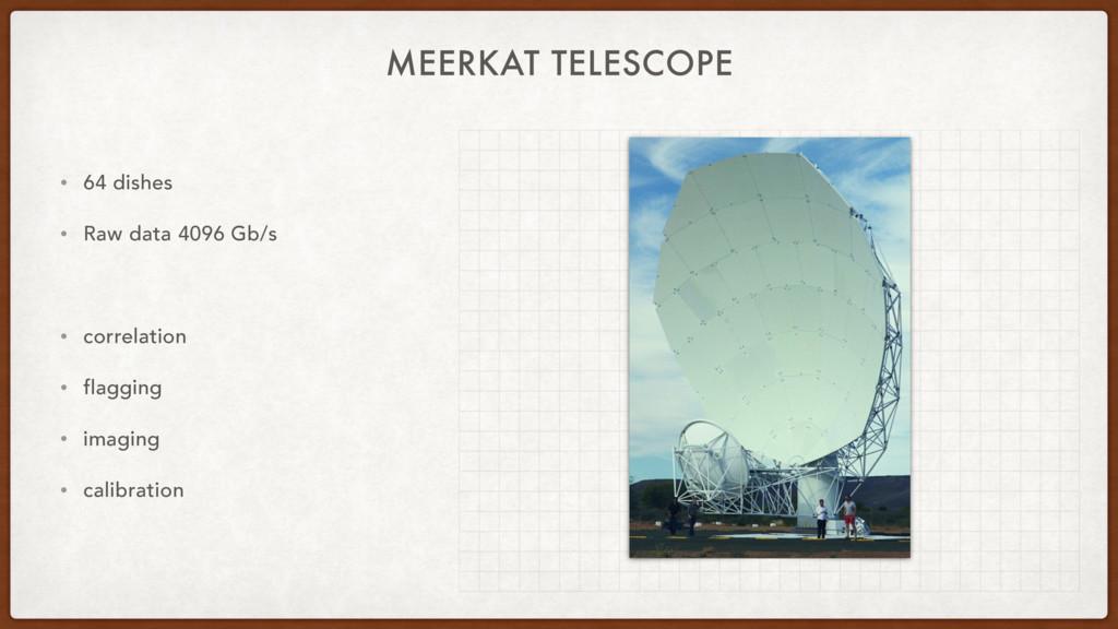 MEERKAT TELESCOPE • 64 dishes • Raw data 4096 G...