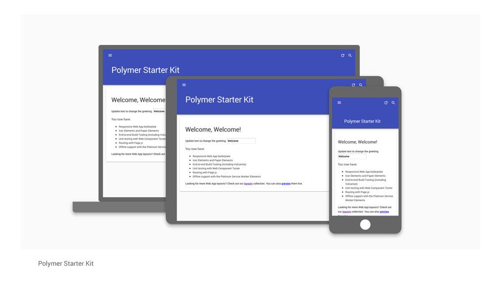 Polymer Starter Kit