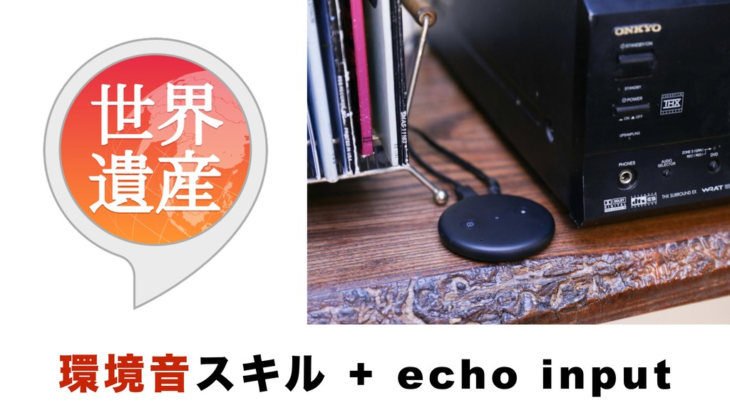ڥԻεΩϧ + echo input