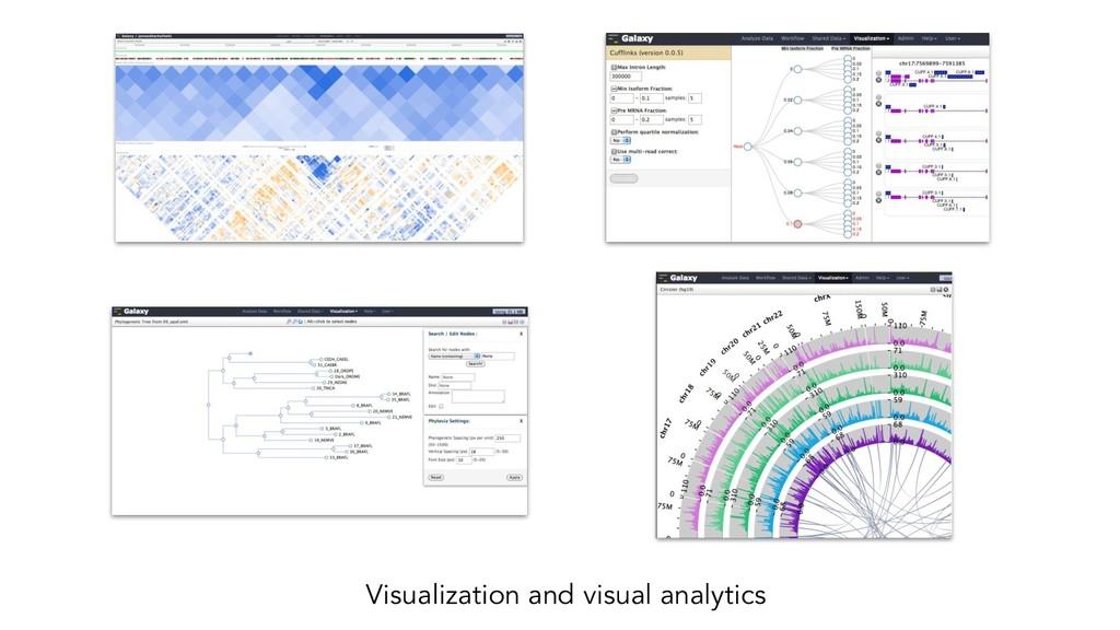 Visualization and visual analytics