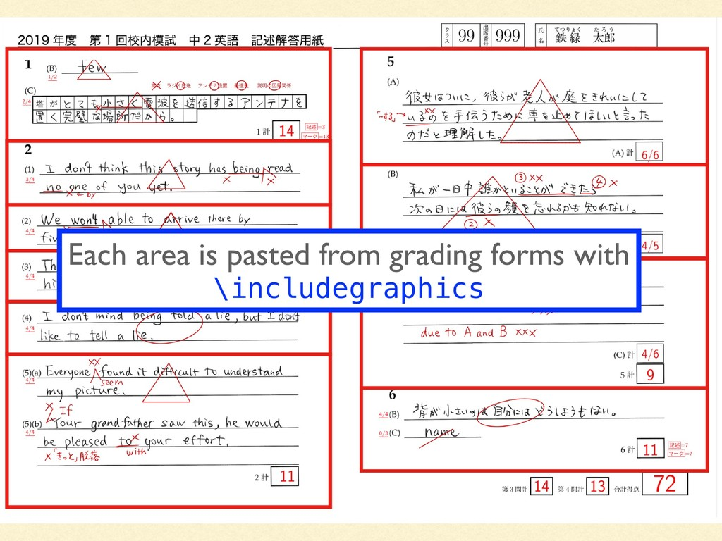 Each area is pasted from grading forms with \in...