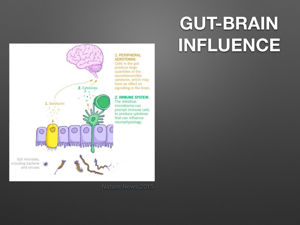 Nature News 2015 GUT-BRAIN INFLUENCE