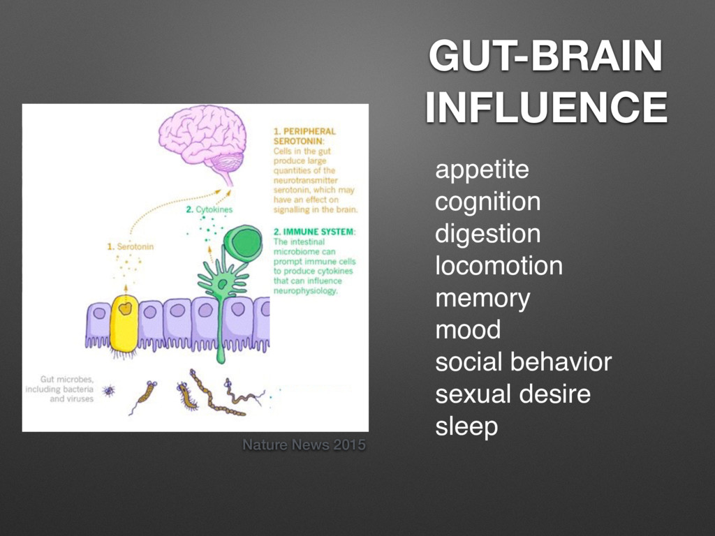 Nature News 2015 GUT-BRAIN INFLUENCE appetite c...