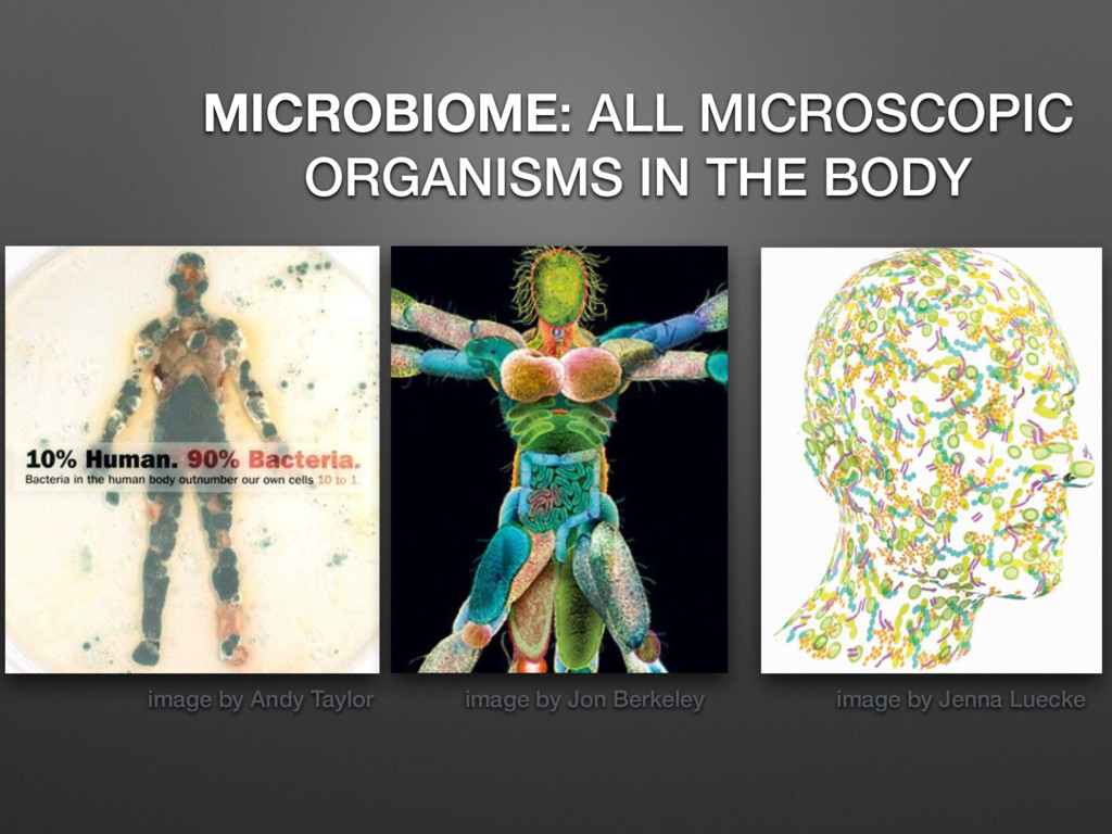 image by Andy Taylor MICROBIOME: ALL MICROSCOPI...