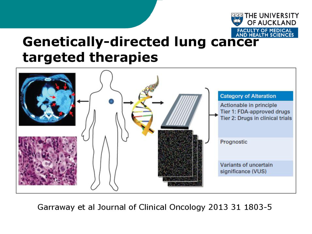 Genetically-directed lung cancer targeted thera...