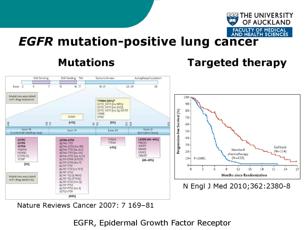 EGFR mutation-positive lung cancer Mutations Ta...