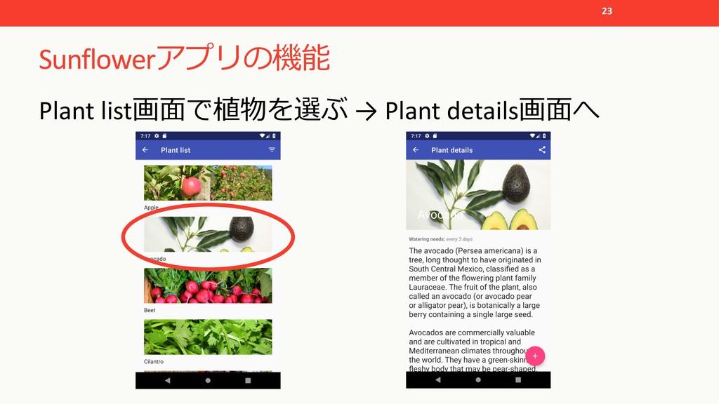 Sunflower  Plant list  → Plant deta...