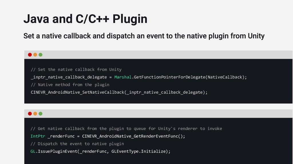 // Set the native callback from Unity _inptr_na...