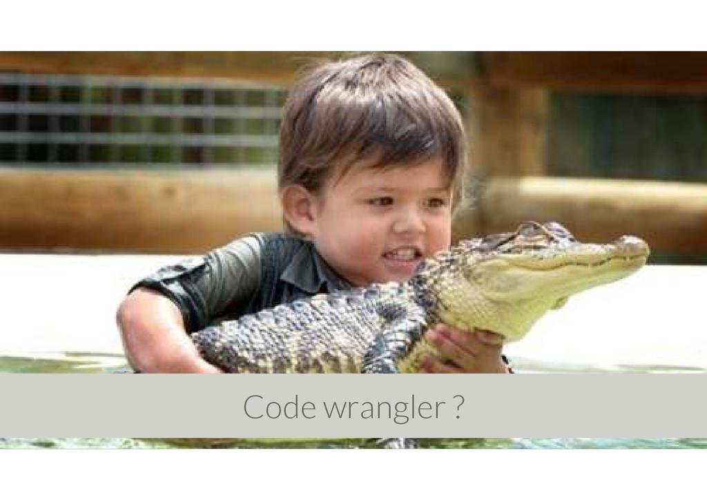 Code wrangler ?