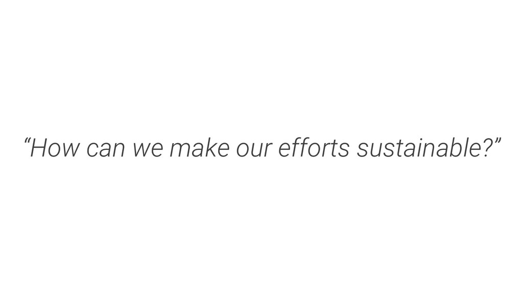 """""""How can we make our efforts sustainable?"""""""