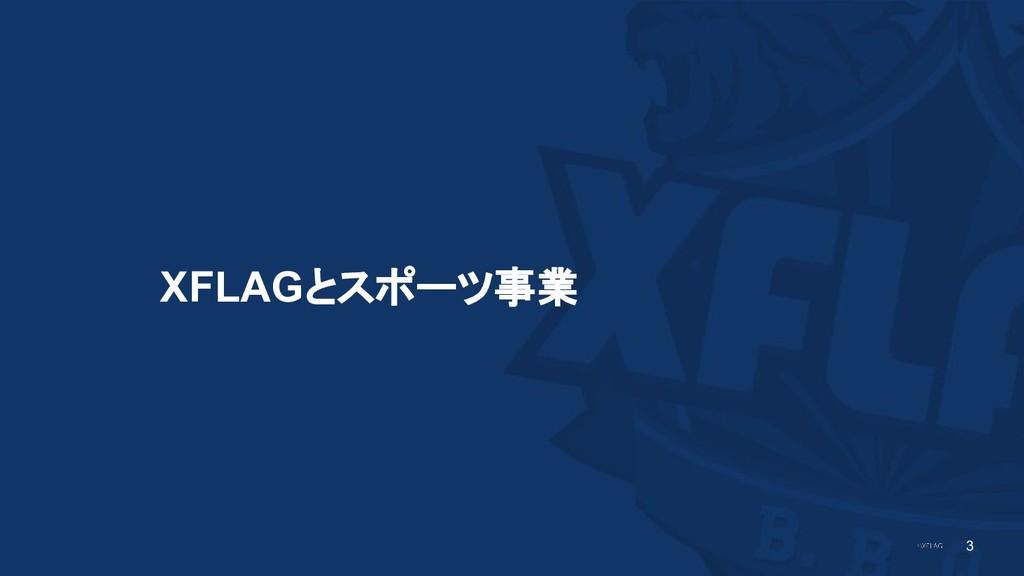 3 XFLAGとスポーツ事業