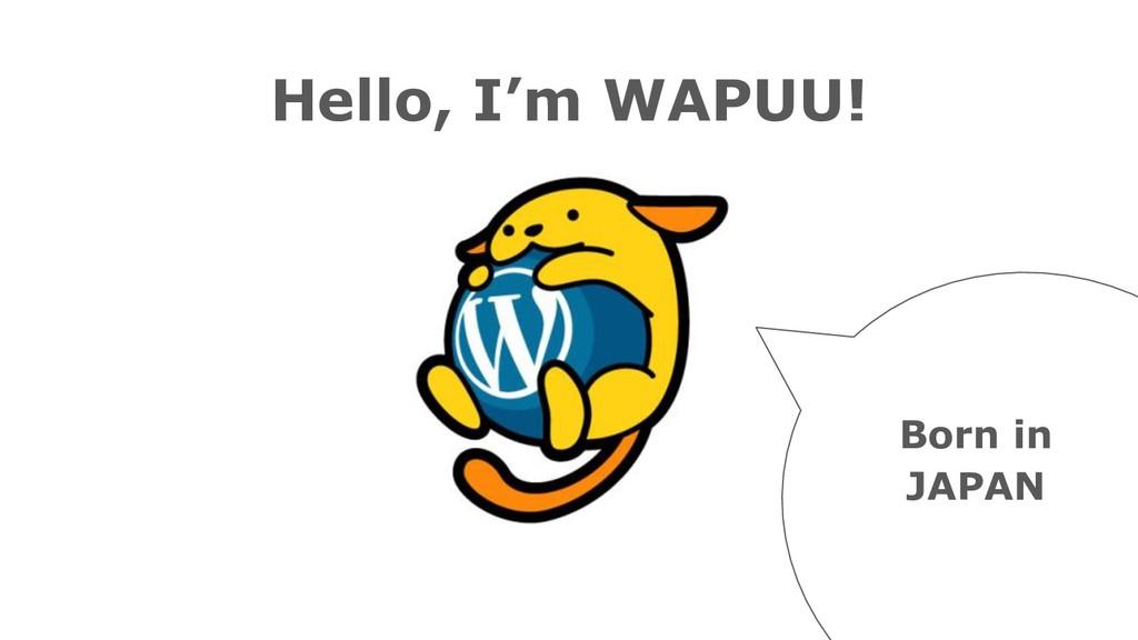 Hello, I'm WAPUU! Born in JAPAN