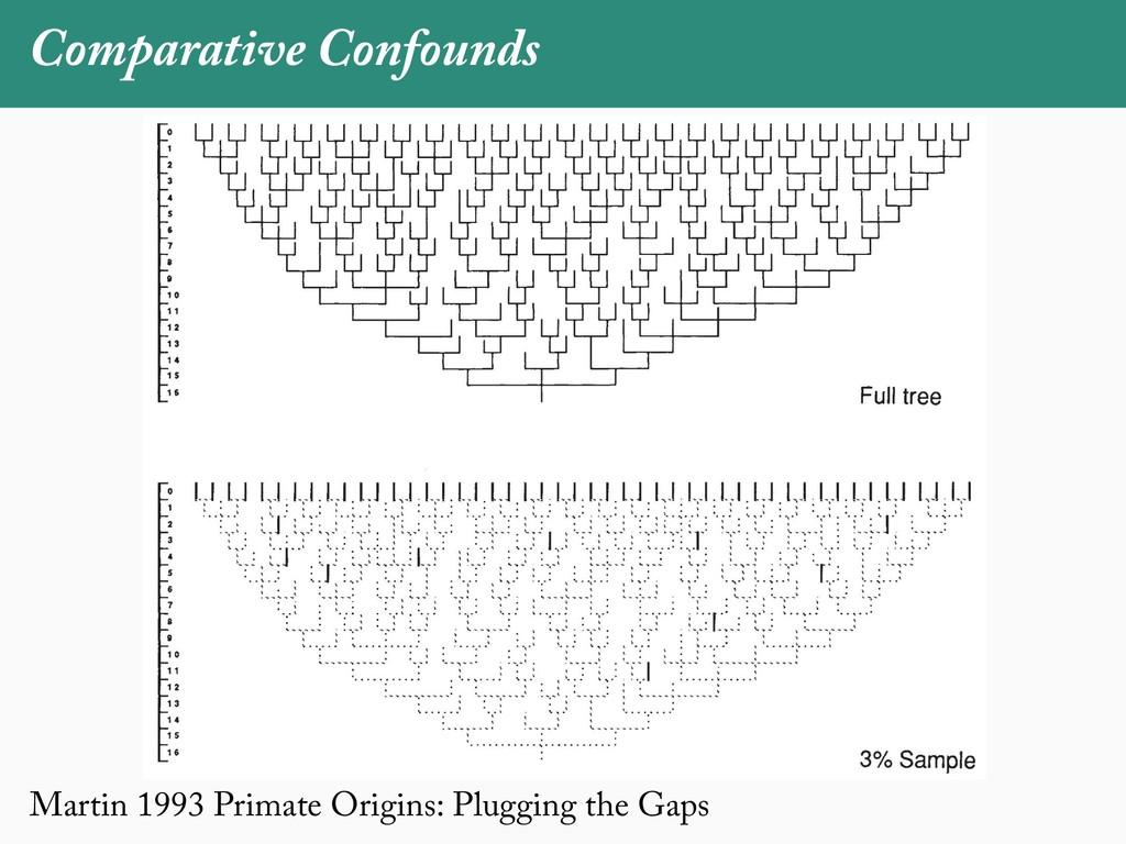 Martin 1993 Primate Origins: Plugging the Gaps ...