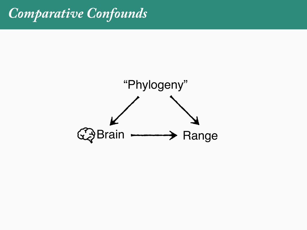 "Comparative Confounds Brain Range ""Phylogeny"""