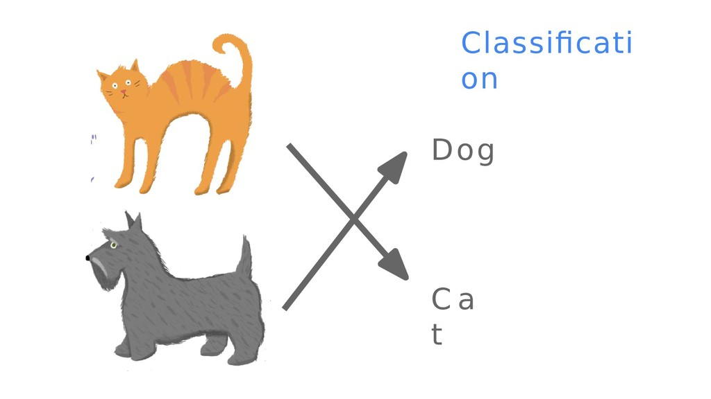 9 C a t Classifcati on Dog