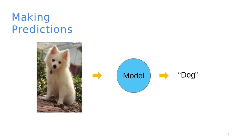 "13 Making Predictions Model ""Dog"""