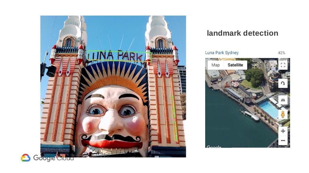 landmark detection